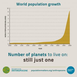 Exponential human population growth can only end in collapse